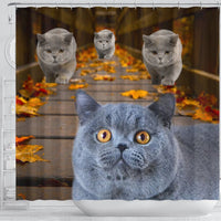 Amazing British Shorthair Cats Shower Curtain-Free Shipping - Deruj.com