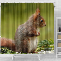 Cute Red Squirrel Print Shower Curtains-Free Shipping - Deruj.com