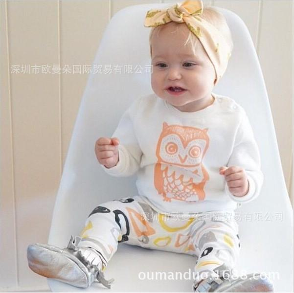 Bump Baby Long Sleeve Novelties T Shirt Owl Pants Clothes - bump, baby and beyond