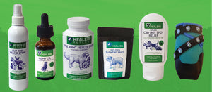 Healers PetCare Announces New Pet Health Products