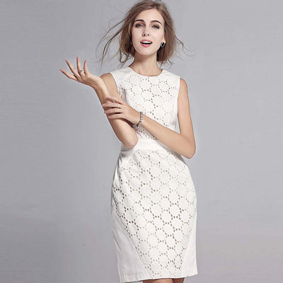 Sleeveless Round Neck Elegant Plain Dress