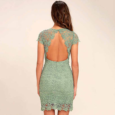 Cap Sleeve Lace Chic Floral Embroidery Dress