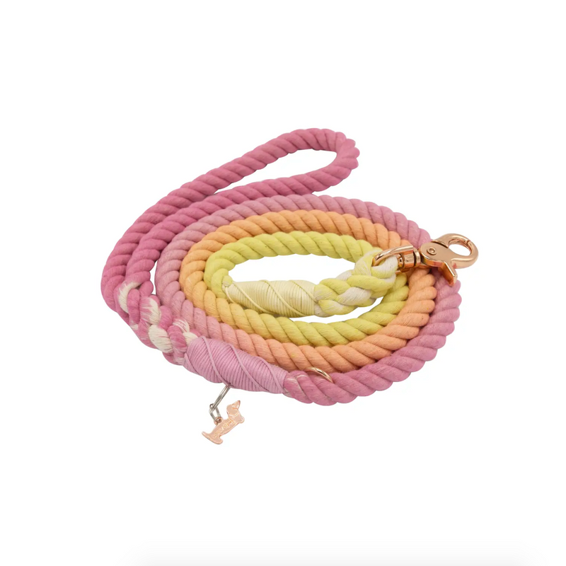 Sunkissed Rope Leash