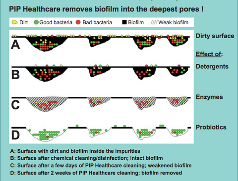 PureBiotics and its effect in biofilm.