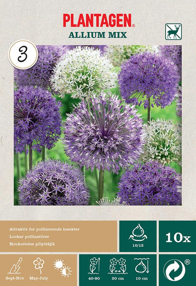 Allium, mix