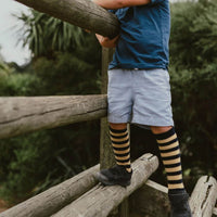 Lamington Camel Tan Navy Merino Socks Knee High
