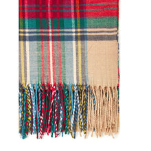 Fringe Trim Plaid Scarf