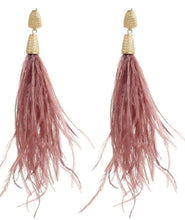 Nikki Long Feather Earrings