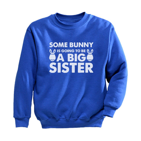 Tstars tshirts Some Bunny is Going To Be a Big Sister Toddler/Kids Sweatshirt