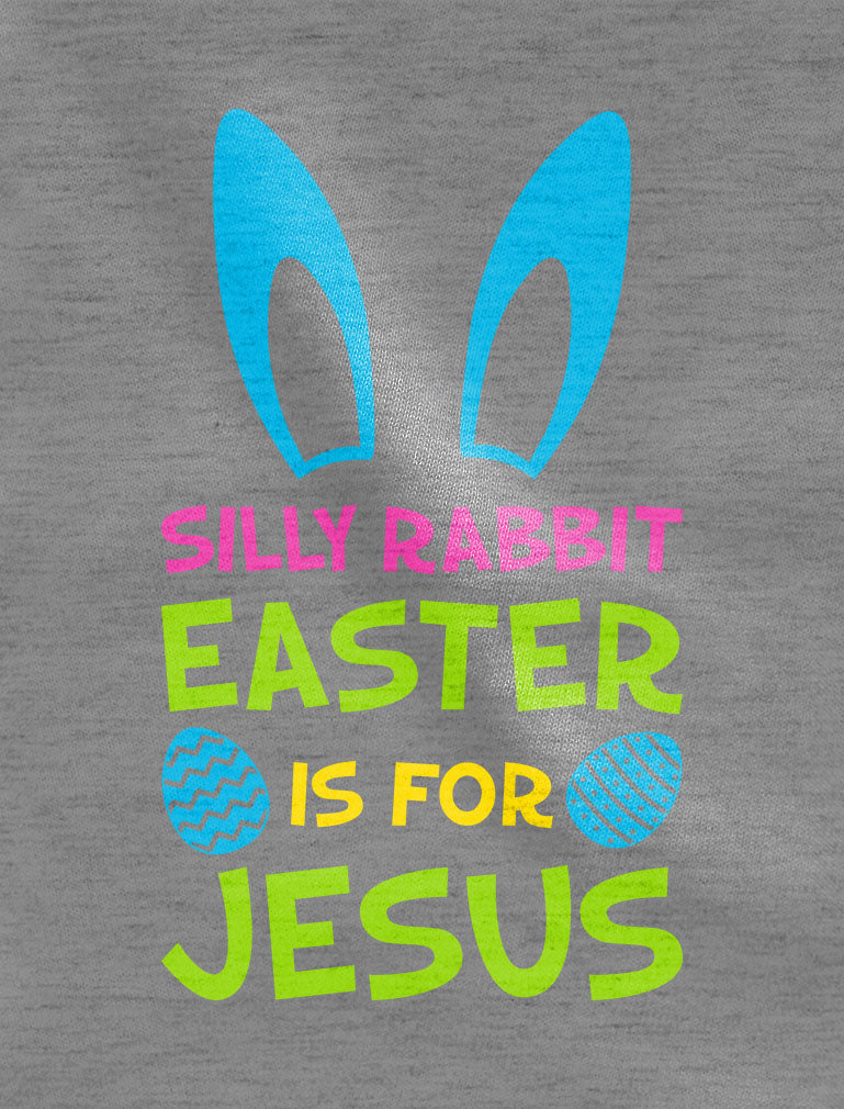 Silly Rabbit Easter is for Jesus Funny Toddler Hoodie