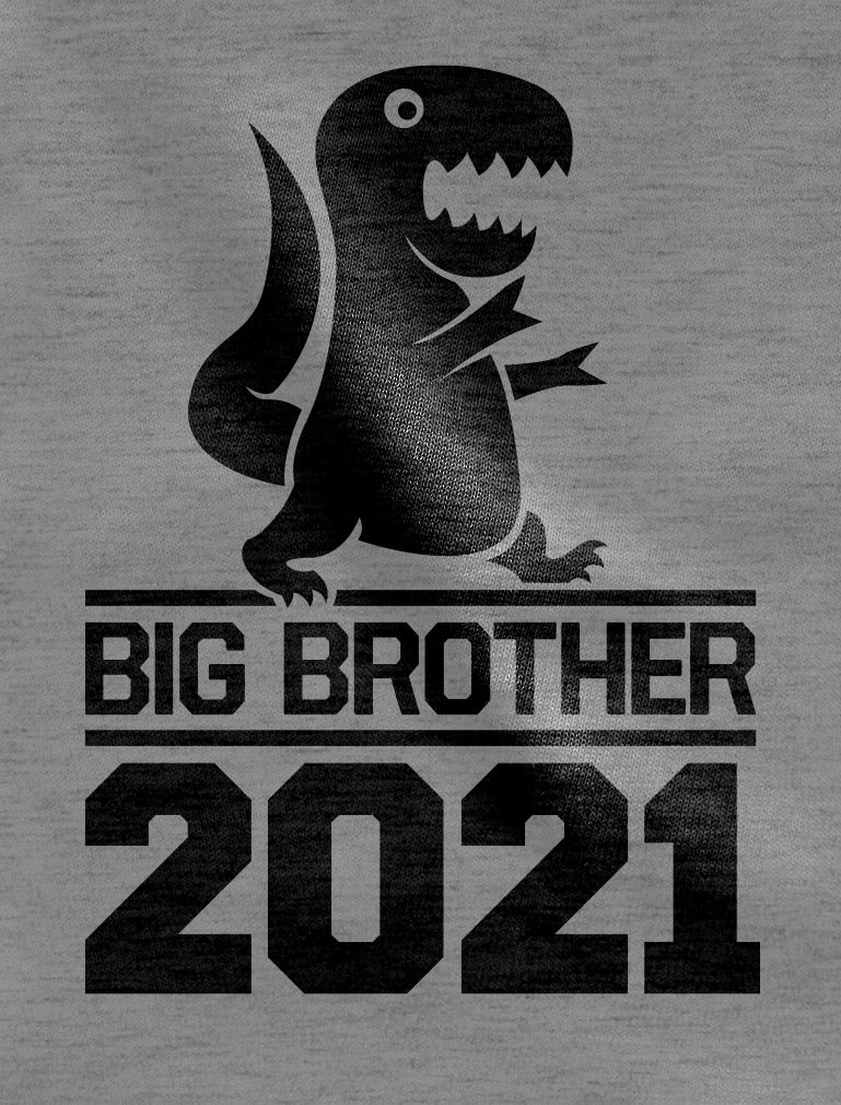 Gift for Big Brother 2021 T-Rex Boys Toddler Kids Long sleeve T-Shirt