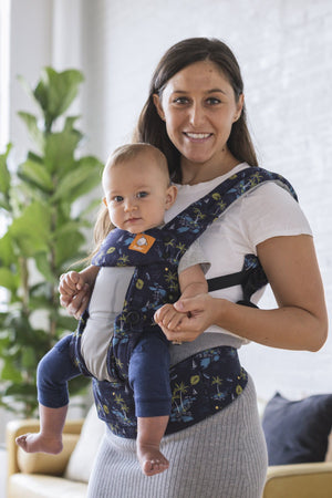 Coast Vacation - Tula Standard Baby Carrier