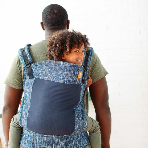 Coast Blues - Tula Toddler Carrier