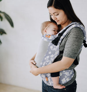 Coast Sophia - Tula Toddler Carrier