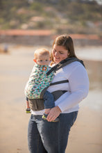 Equilateral - Tula Toddler Carrier