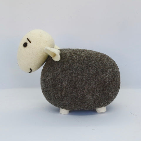 Dark Grey Sheep (White Head)