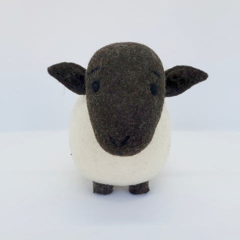 White Sheep (Black Head)