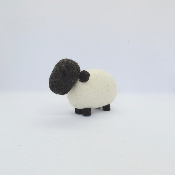 Sheep & Lamb Gift Set White with Black Head