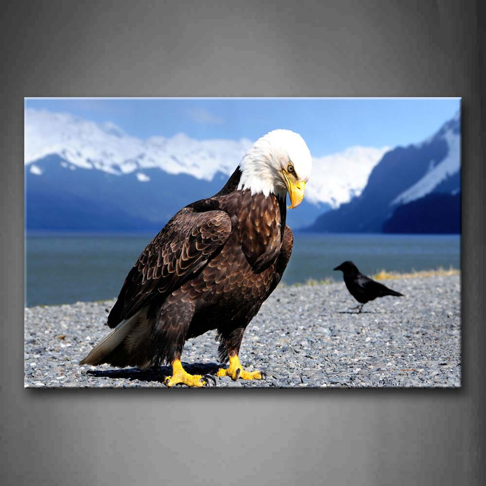 Black Bird And Eagle On Lakeside Snow Mountain Wall Art Painting The Picture Print On Canvas Animal Pictures For Home Decor Decoration Gift
