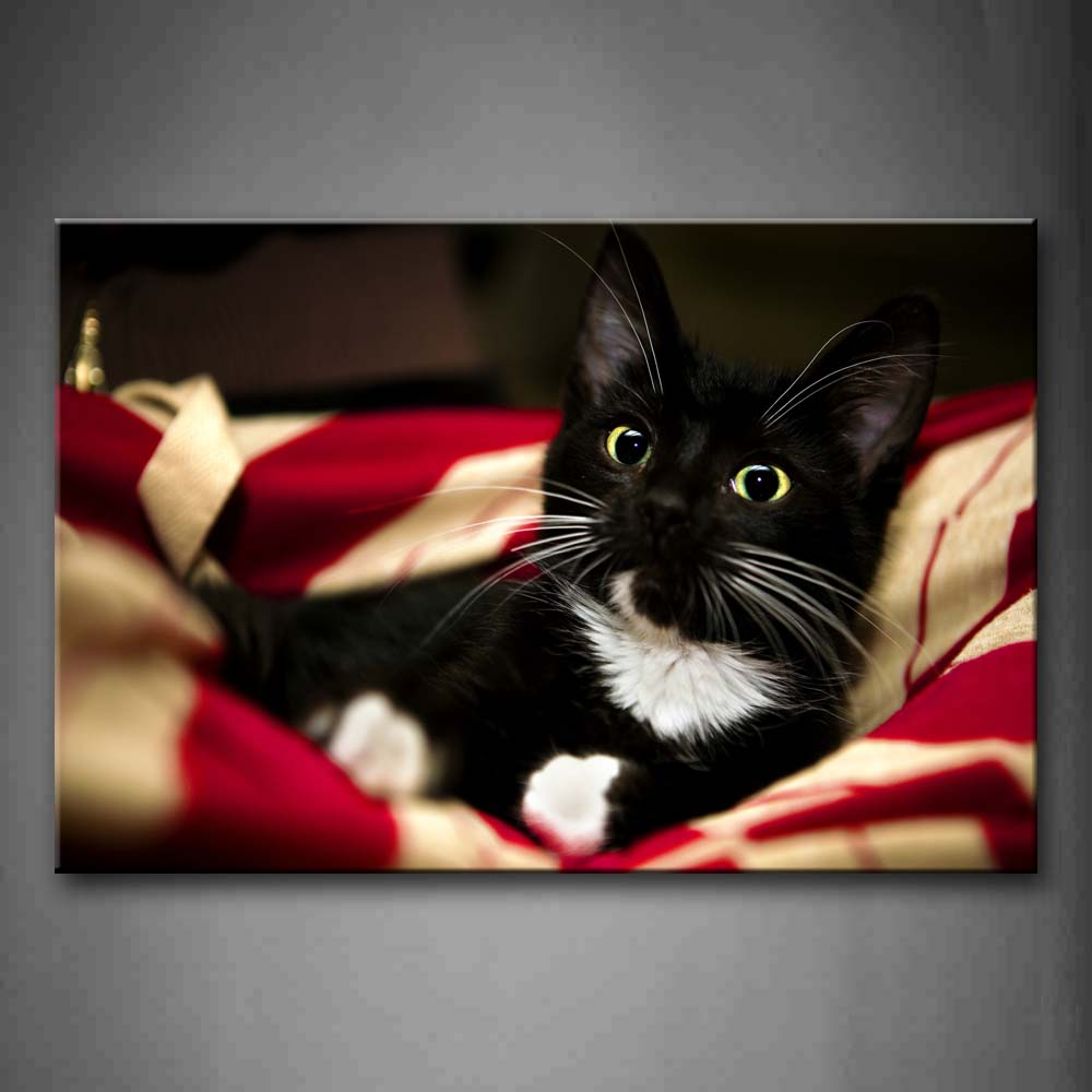 Black And White Sit On Blanket Wall Art Painting The Picture Print On Canvas Animal Pictures For Home Decor Decoration Gift