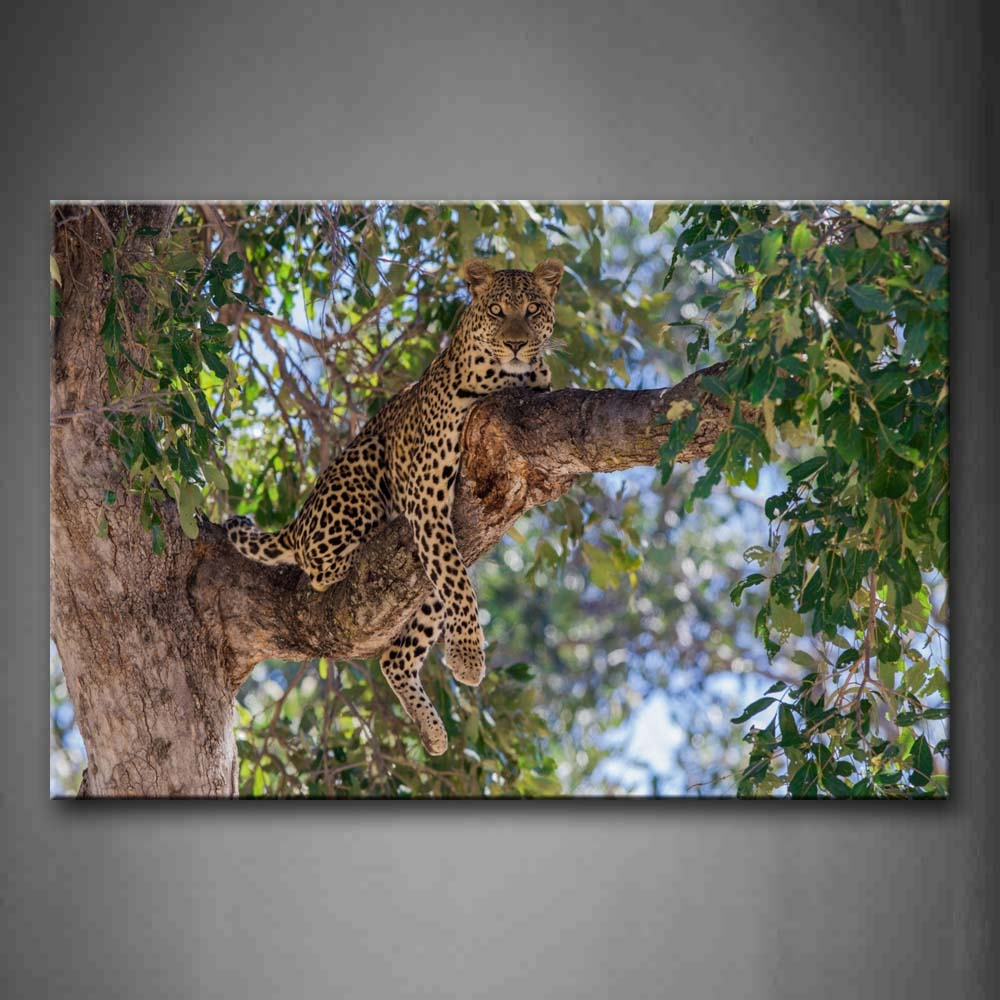 A Leopard Sit At Big Tree Wall Art Painting The Picture Print On Canvas Animal Pictures For Home Decor Decoration Gift