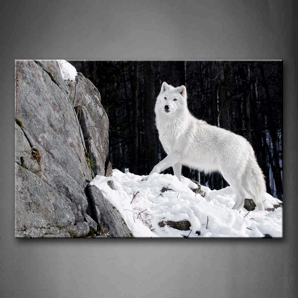 Black And White White Wolf Stand On Snowfield Rock Tree Wall Art Painting The Picture Print On Canvas Animal Pictures For Home Decor Decoration Gift