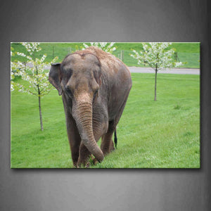 Asian Elephant Walk On Lawn Trees Wall Art Painting Pictures Print On Canvas Animal The Picture For Home Modern Decoration