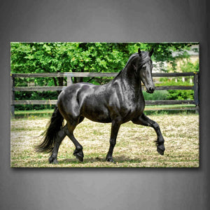 Black Horse Run Pasture Wall Art Painting Pictures Print On Canvas Animal The Picture For Home Modern Decoration
