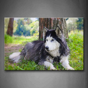 A Black And White Husky Sit Ander Tree Grass Wall Art Painting Pictures Print On Canvas Animal The Picture For Home Modern Decoration