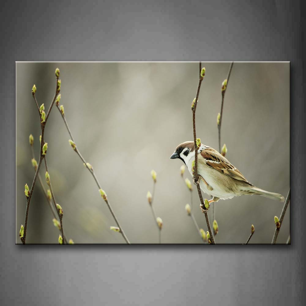 Bird Stand On Treetop Wall Art Painting Pictures Print On Canvas Animal The Picture For Home Modern Decoration
