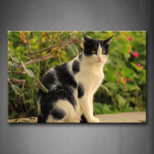 Black And White Cat Sit On Land Trees Wall Art Painting The Picture Print On Canvas Animal Pictures For Home Decor Decoration Gift