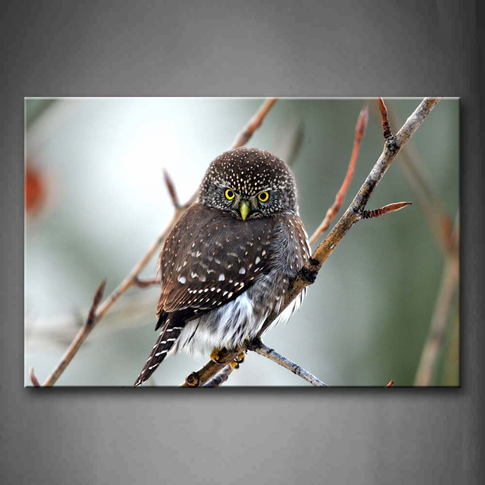 Beautiful Bird Stand On Small Branch  Wall Art Painting The Picture Print On Canvas Animal Pictures For Home Decor Decoration Gift