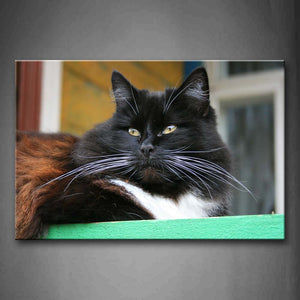 Big Cat Sit On Sill  Wall Art Painting Pictures Print On Canvas Animal The Picture For Home Modern Decoration
