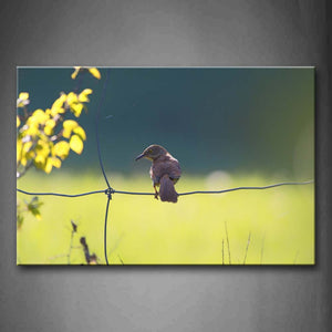 Bird Stop Wire Netting Leafs Wall Art Painting Pictures Print On Canvas Animal The Picture For Home Modern Decoration