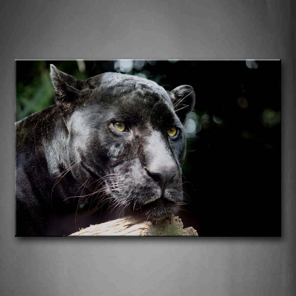Black Panther Over Wood  Wall Art Painting Pictures Print On Canvas Animal The Picture For Home Modern Decoration
