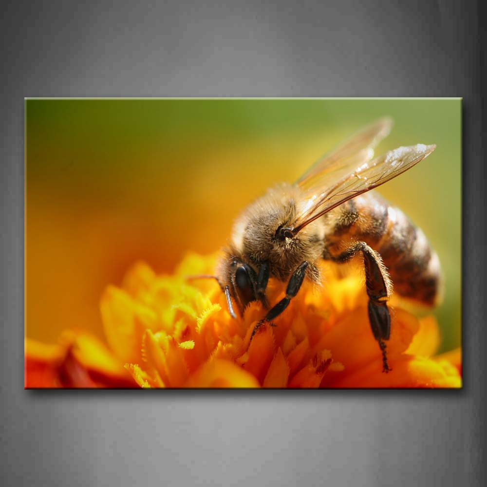 Bee On Yellow Flower Wall Art Painting The Picture Print On Canvas Animal Pictures For Home Decor Decoration Gift