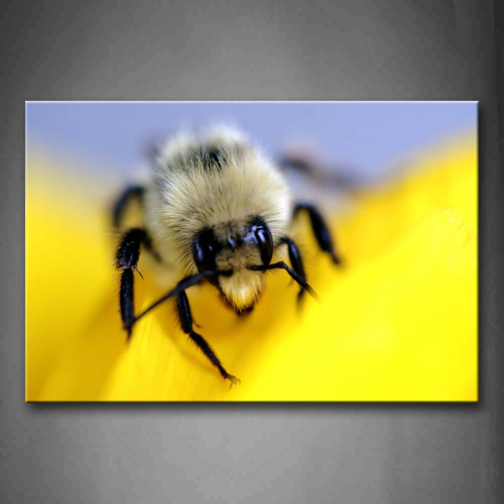 Bee On Yellow Flower Portrait Wall Art Painting The Picture Print On Canvas Animal Pictures For Home Decor Decoration Gift
