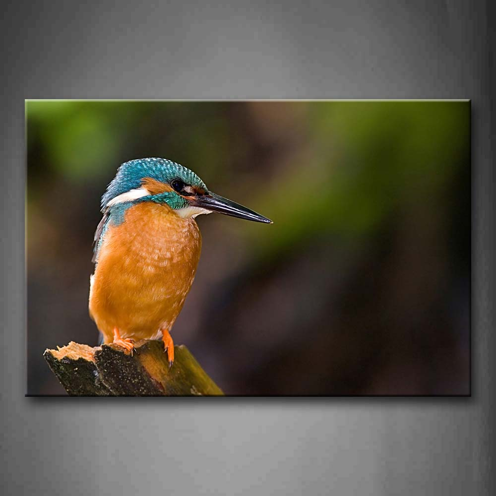 Bird Stand On Wood Portrait Wall Art Painting Pictures Print On Canvas Animal The Picture For Home Modern Decoration