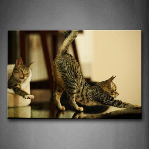 A Cat Stretch Body And The Other Is In Nest Wall Art Painting Pictures Print On Canvas Animal The Picture For Home Modern Decoration