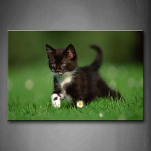 Black Cat Walk On Lawn Wall Art Painting The Picture Print On Canvas Animal Pictures For Home Decor Decoration Gift