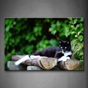 Black Cat Lie On Wood Near Tree Wall Art Painting The Picture Print On Canvas Animal Pictures For Home Decor Decoration Gift