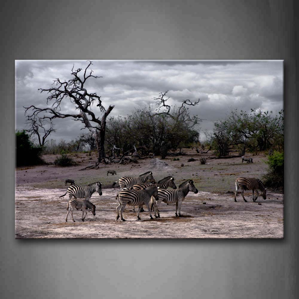 Zebras Walk On Floor Near Dry Tree Wall Art Painting Pictures Print On Canvas Animal The Picture For Home Modern Decoration