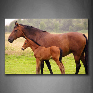 An Old Horse And Baby Horse Stand On Grass Wall Art Painting Pictures Print On Canvas Animal The Picture For Home Modern Decoration
