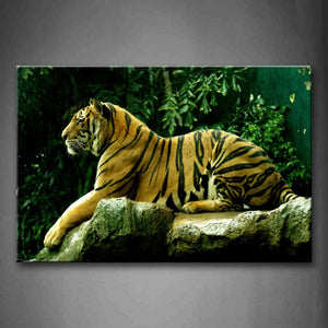 Big Tiger Sit On Stone Near Tree Wall Art Painting The Picture Print On Canvas Animal Pictures For Home Decor Decoration Gift
