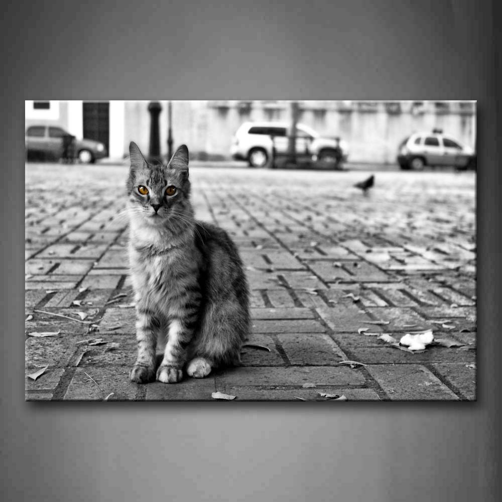 Black And White Little Bird Stand Near A Cat On Road Wall Art Painting Pictures Print On Canvas Animal The Picture For Home Modern Decoration