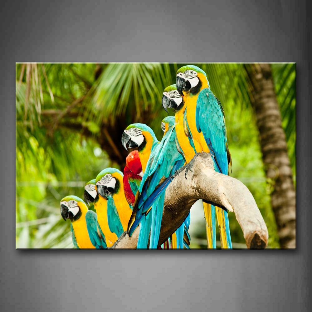 Beautiful Macaw Stand On Branch  Wall Art Painting Pictures Print On Canvas Animal The Picture For Home Modern Decoration