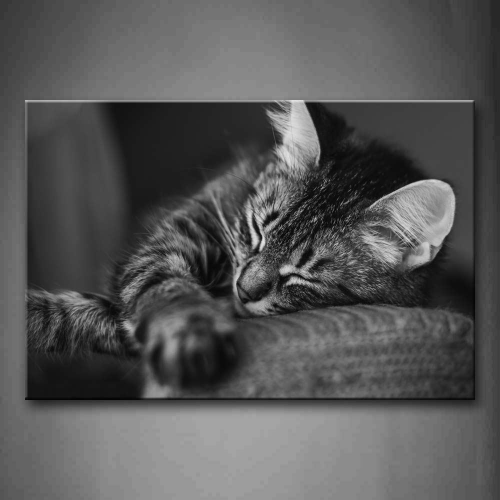 Black And White Gray Cat Sleep On Sofa Wall Art Painting The Picture Print On Canvas Animal Pictures For Home Decor Decoration Gift