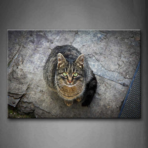 Black Cat Stand On Ground Look Up  Wall Art Painting The Picture Print On Canvas Animal Pictures For Home Decor Decoration Gift