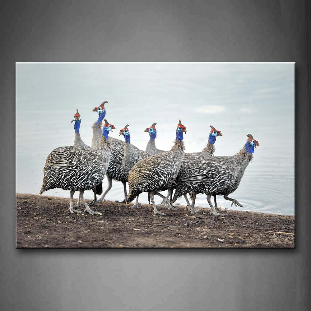 A Group Of Beautiful Birds Walk On Mud Near Lake Wall Art Painting Pictures Print On Canvas Animal The Picture For Home Modern Decoration