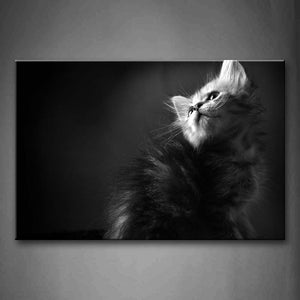 Black And White Cat Look Up Wall Art Painting The Picture Print On Canvas Animal Pictures For Home Decor Decoration Gift